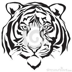 tiger drawing face - Google Search