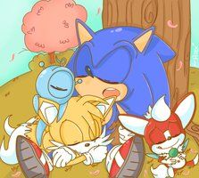 Sonic, chip, tails, and hacker relaxing