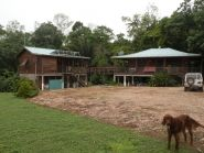 13 Acre Farm for sale in Cayo, Belize!
