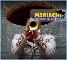 Mariachis Bogotá Statistics Help, Musical, Service Design, Jewelry Accessories, Fashion Jewelry, Life, Jewelry Findings, Trendy Fashion Jewelry, Costume Jewelry