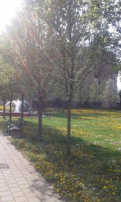 #park #spring #nice