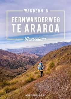 Der Te Araroa Trail ist der längste Fernwanderweg Neuseelands und führt vom Norden bis zum Südzipfel. Im Interview berichtet Gina von ihren Erfahrungen.