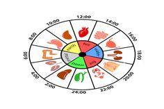 Budíte se v noci opakovaně ve stejný čas? Podle čínské medicíny souvisí s problémy konkrétních orgánů Le Mal A Dit, Emotional Meaning, Body Clock, Reflexology Massage, I Ching, Health Heal, Tarot Card Meanings, Acupressure Points, Traditional Chinese Medicine