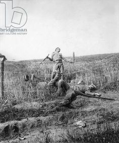 Fallen Russian soldiers caught in a barbed wire fence on the Eastern front, July 1915 (b/w photo), German Photographer Century) / © SZ Photo / Scherl / Bridgeman Images Military Photos, Military History, History Images, Art History, World War One, First World, Ww2 Photos, War Photography, Historical Pictures