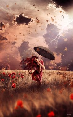 All my elements . . . women, storms, wind, poppies and umbrellas!!    :o)  I ordered a large print, it came promptly and of great quality. I am having it matted and framed.