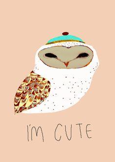 ashley percivals owl illustration