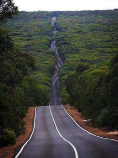Road on Kangaroo Island Australia