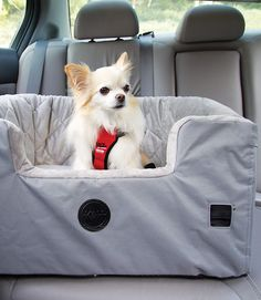 Bucket Booster Pet Seat - Large Gray