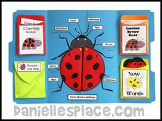Ladybug Lap Book Lesson from Bug Buddy Studies from www.daniellesplace.com