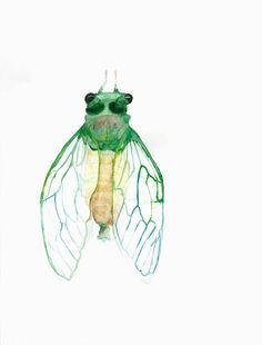 peinture insecte