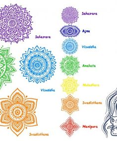 Seven chakras are the energy centers of our body and are positioned throughout the body. They keep the energy flowing within us and maintain the body functions