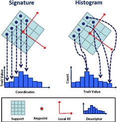 Image result for histogram of orientations
