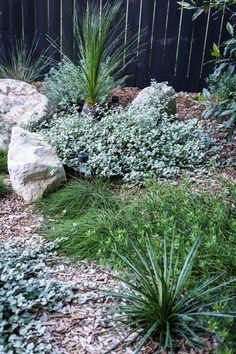 My Backyard Makeover — Adore Home Magazine Australian Garden Design, Australian Native Garden, Landscaping Supplies, Front Yard Landscaping, Succulent Landscaping, Modern Landscaping, Garden Edging, Garden Beds, Fence Garden