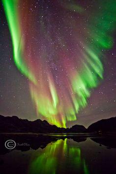 Aurora en Sortland, Noruega.-