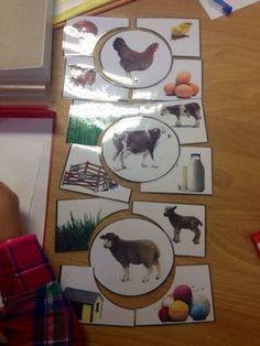 Animal Activities, Preschool Learning Activities, Preschool Kindergarten, Preschool Activities, Kids Learning, Preschool Curriculum, Montessori Materials, Montessori Toys, Farm Animal Crafts