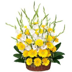 Here we are taking the pleasure of expressing your feelings. This Expression is Done Through the Basket consiting of Gerberas and Gladiolus Beautifully Arranged. So Get this Basket Through our and Make Your Dear Once Surprise. Large Flower Arrangements, Send Flowers Online, Online Florist, Fresh Flower Delivery, Diwali Gifts, Festival Lights, Online Gifts, Fresh Flowers, Beautiful Landscapes