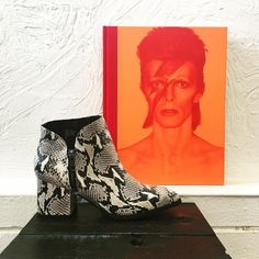 Snakeskin booties  David Bowie books make cloudy days brighter.  #betsykingshoes #paseoartsdistrict #myhappyplace #shoplocal #davidbowie
