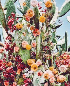 Easter, desert-swag  #happyeaster #flowers #cacti #desert @acolorstory