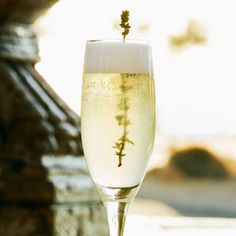 Elderflower Fizz: Freshly prepared lime sour adds nimble zing to this vodka-and–St-Germain Fizz. Crown that combination with a crisp, brut sparkling wine and a sprig of thyme—a nod at the earthy undertones of elderflower.