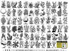 Hey folks! Here's a batch of new plant, flower and foliage design ideas! Enjoy! Lorenzo!