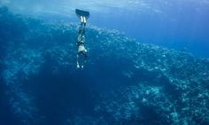 A freediver at the Blue Hole, a 120-metre-deep sinkhole near Dahab which has claimed many lives.