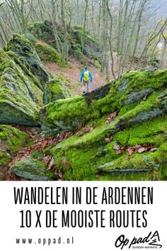 Places To Travel, Places To See, Travel Destinations, Walking In Sunshine, Weekender, Travel Camper, Visit Belgium, Hiking Routes, Eifel