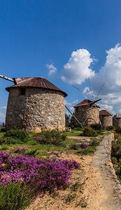 Windmills in Penacova (Atalhada) - Portugal #PORTUGALmilenar #PortugalFlowerPower