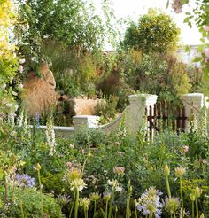 Chelsea Flower Show 2018 - Jonathan Snow - Landscape and Garden Design Landscape Design, Garden Design, Chelsea Flower Show 2018, Dutch Gardens, South African Wine, Cape Dutch, Dutch House, Homestead Gardens, Garden Inspiration