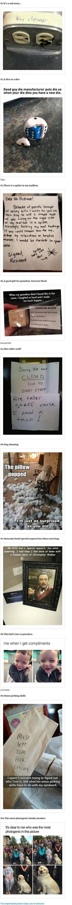 Funny Memes To Brighten Your Day