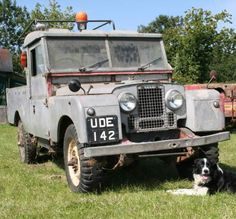 """Man's best friend, and a dog ... (1955 Land Rover, 107"""")"""