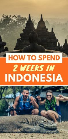 In this travel guide to Indonesia you will find a 2 week itinerary for backpacking trip or honeymoon in Indonesia. Find out the best ways to visit Bali, Java, Lombok and other islands Learn where to try the best food, experience Indonesia culture and visit the best beaches. Top things to do, tips, advice, and more
