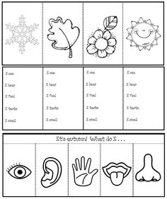 5 senses activities, 5 senses crafts, 5 senses writing prompts, 5 senses booklet, adjective activities, 4 seasons activities, 4 seasons crafts, 4 seasons booklet, 4 seasons writing prompts