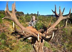 Elk Pictures, Hunting Pictures, Animal Pictures, Red Stag Hunting, Deer Hunting Tips, Deer Shot, Deer Pics, Moose Deer, Bull Elk