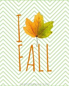10 Fall Printables!