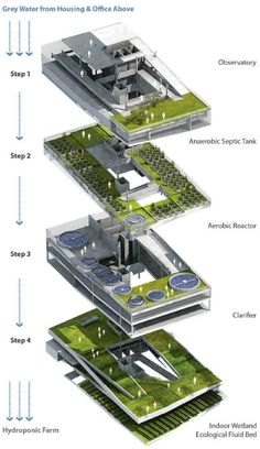 urban vertical wetland