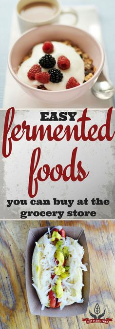 Before you waste money on kits and fermented foods you have never tried, and definitely before you leap with both feet into fermentation of your own foods, take a few moments and consider these fermented foods instead.