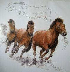 Hunting Ice Age horses  near Brno around 18,000 years ago