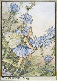 Cecily Mary Barker Cicely Mary Barker, Vintage Fairies, Flower Fairies, Fairy Art, Magical Creatures, Fantasy Creatures, Fairy Houses, Illustrator, Fairy Tales
