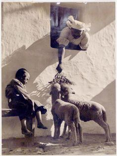 Lamb Feeding - Photo by Vadas Ernő. Big People, Old Images, Folk Music, Photo Archive, Vintage Children, Black And White Photography, Budapest, Sheep, Monochrome