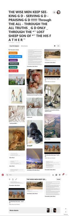 Screenshot: Pinterest Mafia Crime, Cave Bear, The Lost Sheep, American English, Blessed, Cherub, Jerusalem, Caves, Hustle