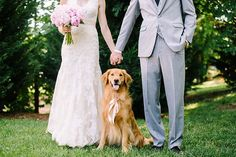 Como incluir um animal de estimação no casamento