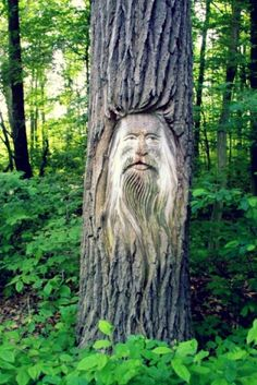 I dont like formal gardens. I like wild nature. Its just the wilderness instinct in me, I guess. ~Walt Disney in 2020 Tree Carving, Wood Carving Art, Wood Art, Tree People, Tree Faces, Formal Gardens, Tree Sculpture, Wild Nature, In The Tree