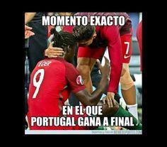 memes, portugal, euro'2016, vitória