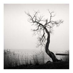 © Frang Dushaj Photography