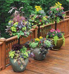 Garden Artisans - qu Beautiful gorgeous pretty flowers