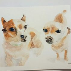 Did this one freehand. ¡Ay Chihuahua!