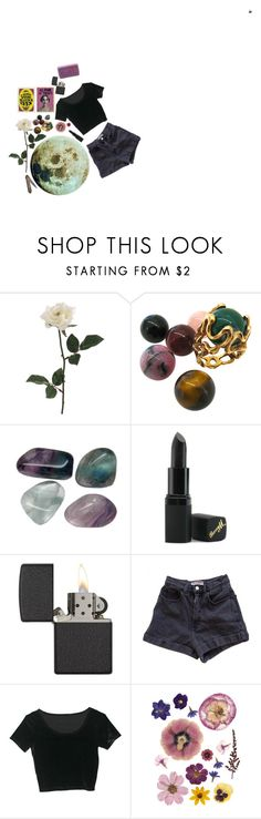 """""""nocturnoX"""" by sofmilh on Polyvore featuring Belleza, Gilbert Albert, Barry M, Zippo y American Apparel"""