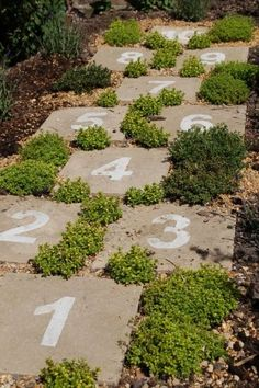 Hinkelpad van oude (stoep)tegels, genummerd met betonverf en met vetplantjes ertussen.