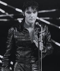 Image result for elvis pictures