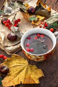 Autumn cup of tea